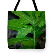 Dewy Ferns Tote Bag