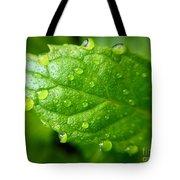 Dewy Mint Tote Bag