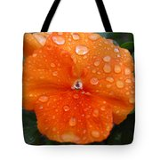 Dewy Pansy 1 Tote Bag