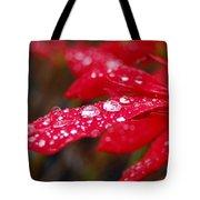 Dewy Petals Tote Bag