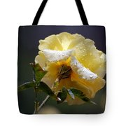 Dewy Yellow Rose 1 Tote Bag