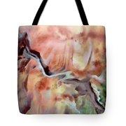 Diagonal Earth Tote Bag