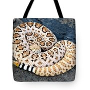 Diamondback Coils Tote Bag
