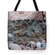 Diamondback Rattlesnake 062414a Tote Bag