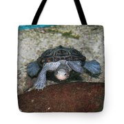 Diamondback Terrapin Tote Bag by Lynn Jackson
