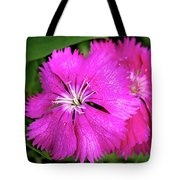 Dianthus First Love Flower Print Tote Bag