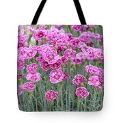 Dianthus Gold Dust Flowers Tote Bag