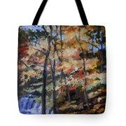 Dick's Creek Falls Tote Bag