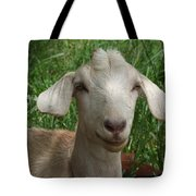 Did You Bring Lunch Tote Bag