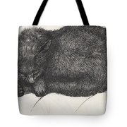 Diddy Big Face Tote Bag