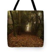 Diferent Paths Tote Bag
