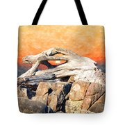 Diftwood Sunset Tote Bag