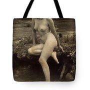 Digital Ode To Vintage Nude By Mb Tote Bag
