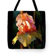Digital Painting Iris Catching The Sun 6768 Dp_2 Tote Bag