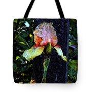Digital Painting Pink And Yellow Iris 6758 Dp_2 Tote Bag