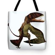 Dimorphodon Pterosaur Tote Bag