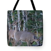 Dinner Time Does Tote Bag