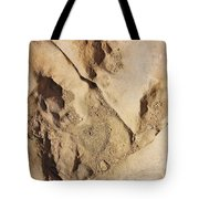 Dino Tracks In The Desert 2 Tote Bag