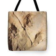 Dino Tracks In The Desert 3 Tote Bag