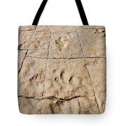 Dino Tracks In The Desert 4 Tote Bag