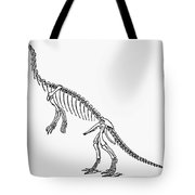 Dinosaur: Anchisaurus Tote Bag