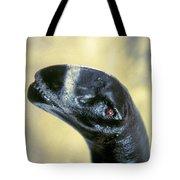 Dinosaur: Camarasaurus Tote Bag