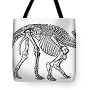 Dinosaur: Monoclonius Tote Bag