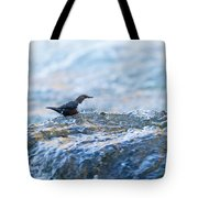 Dipper Searching For Food Tote Bag