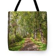 Dirt Path In A Birch Grove  Tote Bag