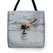 Dirty Water Dog Tote Bag