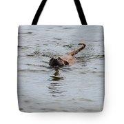 Dirty Water Dog Tote Bag