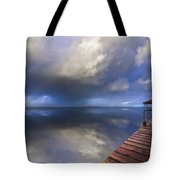 Disappearing Rainbow Tote Bag
