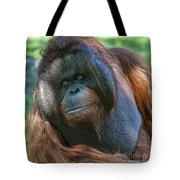 Disapproving Glance Tote Bag