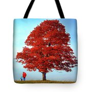 Discovering Autumn - Reflection Tote Bag