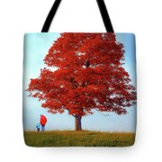 Discovering Autumn Tote Bag