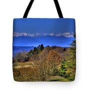 Discovery Park No.2 Tote Bag
