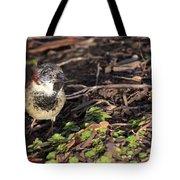 Disfigured Bird Tote Bag