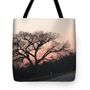 Displaced With Grace Tote Bag