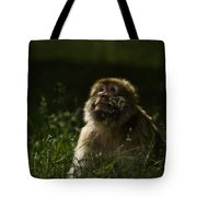 Distant Thoughts Tote Bag