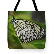 Distinctive Side Profile Of A White Tree Nymph Butterfly Tote Bag
