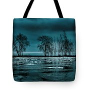 Distorted Reflections  Tote Bag