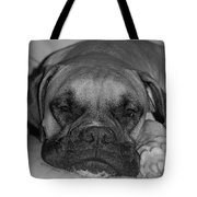 Disturbing His Nap Tote Bag by DigiArt Diaries by Vicky B Fuller
