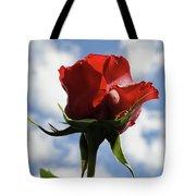 Diva Rose Tote Bag