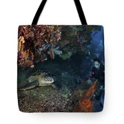 Diver And Sea Turtle, Manado, North Tote Bag by Mathieu Meur