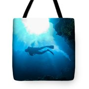Diver At Pakin Atoll Tote Bag