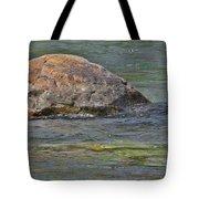 Diving Turtle Rock - Flathead River Middle Fork Mt Tote Bag by Christine Till