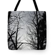 Divinity Light Tote Bag