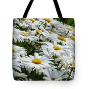 Dizzy With Daisies Tote Bag
