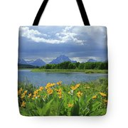 Dm9235 Mt. Moran From Oxbow Bend Tote Bag