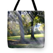Do-00017 Point Frederic Tote Bag